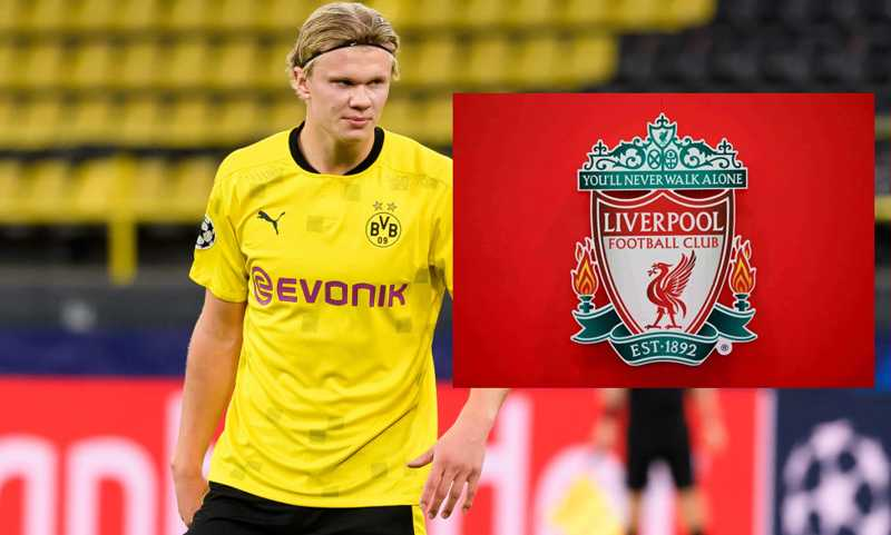 Why Liverpool should sign a 'Erling Haaland'